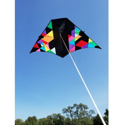 Collection/Designer Kites